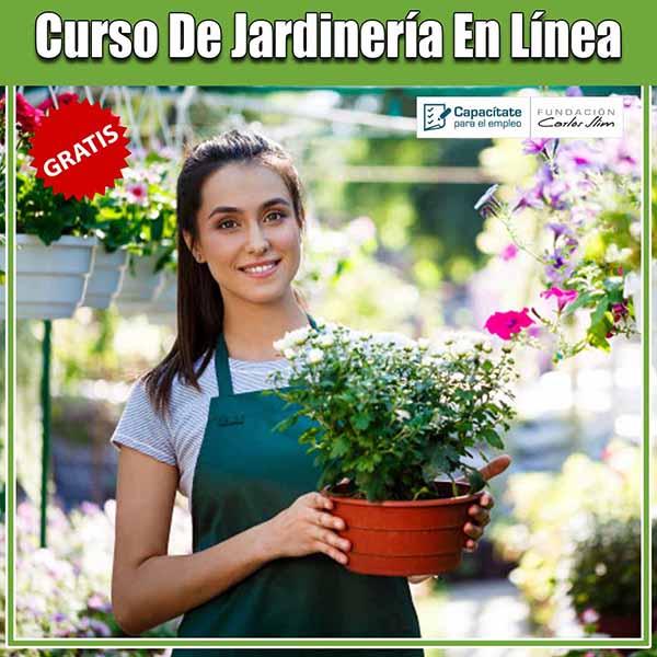 Curso de jardinería en línea
